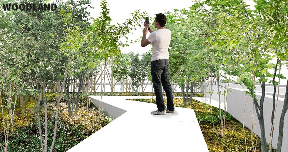 Chicago flower and garden show 2017 immersive garden design - Chicago flower and garden show 2017 ...
