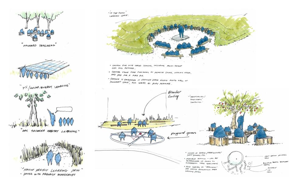 Academy for global citizenship for Garden design group