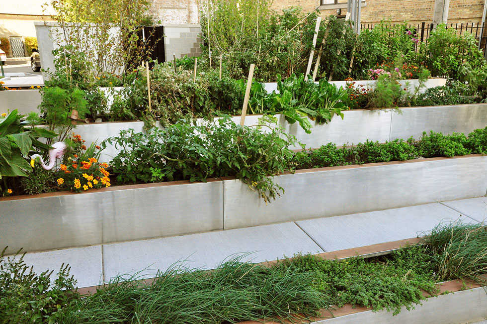 Scape ideal design your landscape 60629 chicago for Community garden designs