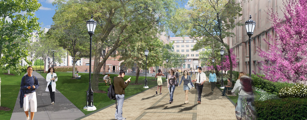 The University of Chicago 58th Street | Streetscape Design